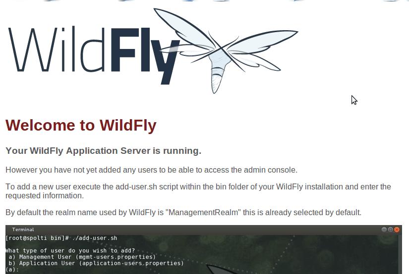 Add user to Wildfly - bgasparotto
